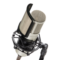 Excellent USB condenser microphone for recording vocals.<br />Cardioid polar pattern. <br />Great sound and design at a breakthrough price!<br /><br />