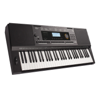 A great learner keyboard with an extensive feature set!<br />Lovely piano sound, powerful speaker system.<br />Well-built with stylish looks.<br />USB connectivity.<br />AUX IN and MIC IN for playing and singing along to tracks.<br />Effects for the Mic Input, including reverb.<br /><br />